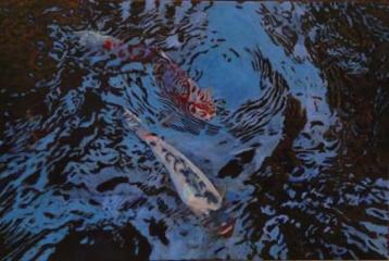 Koi Pond By Sharon Tama